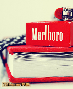 Best Cigarettes Brands In The World Best Cigarettes For You