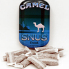 Reynolds Tobacco Campaign to Promote Camel Snus